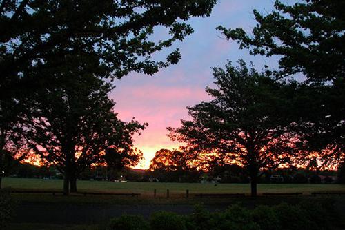 Залез над парка